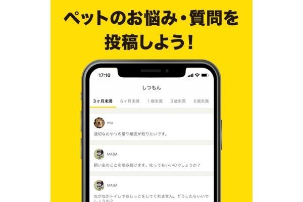 ペットのQ&A・情報コミュニティサービス【PETMO(ぺっとも)】iOSアプリ 質問できる