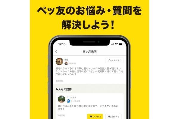 ペットのQ&A・情報コミュニティサービス【PETMO(ぺっとも)】iOSアプリ お悩みを解決しよう