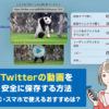 超簡単!Twitterの動画を保存するおすすめの方法と注意するべきポイント